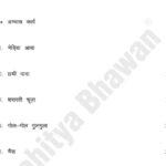 Saral Hindi Abhyas Patr 1-7047
