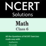 NCERT Solution Math Class 6-0